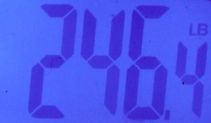 Weight In 2-7-2013 (Down .2 from yesterday)